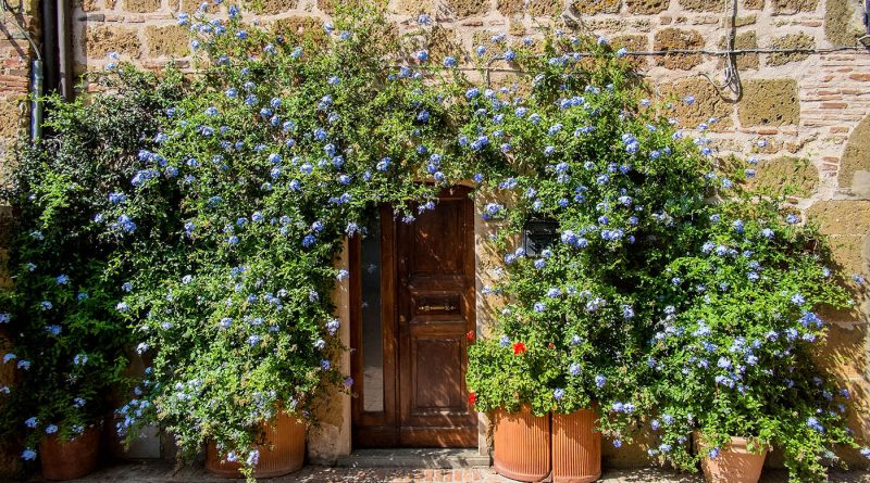 Photography of beautiful colourful doorway in Sovana